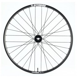 ASTERION XC 29 DISC (Paire)